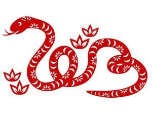 שנת הנחש3