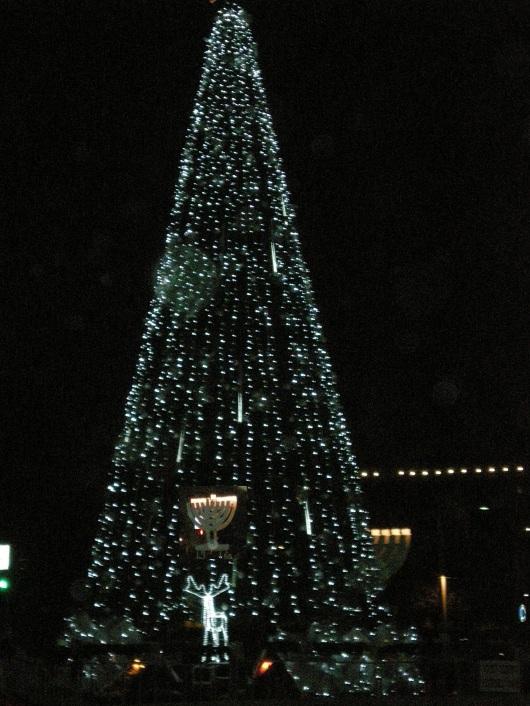 חנוכיה על רקע עץ חג המולד Hanukkah menorah on Christmas tree