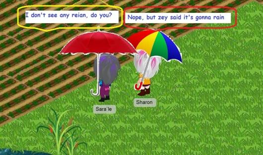 גשם גשם משמיים Rain rain rain