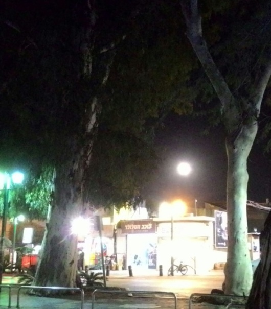 ירח-על בחדרה 3.12.17 Supermoon in Hadera