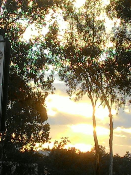 שקיעה בוערת Burning sunset