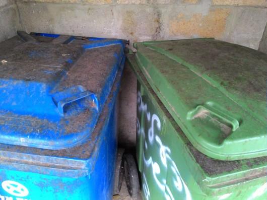 פחים מטונפים ברחוב שלי, מבט מקרוב Dirty garbage bins in my street, a closer look