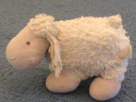 הכבשה פועה The sheep bleats