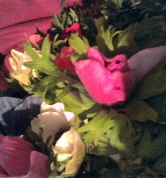 פרחים Flowers