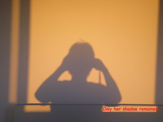 רק צלה נותר Only her shadow remained