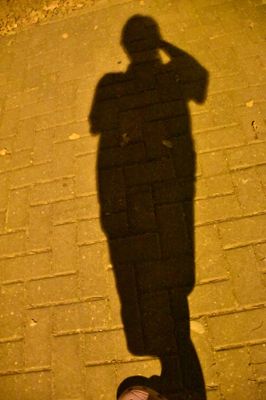 הצלמת בדימוי של עצמה כצל מצולם The photographer in the image of herself as a photographed shadow