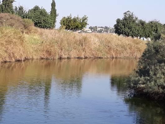 שמורת נחל אלכסנדר Alexander River Nature Reserve