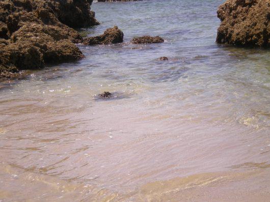 חוף אולגה Olga Beach