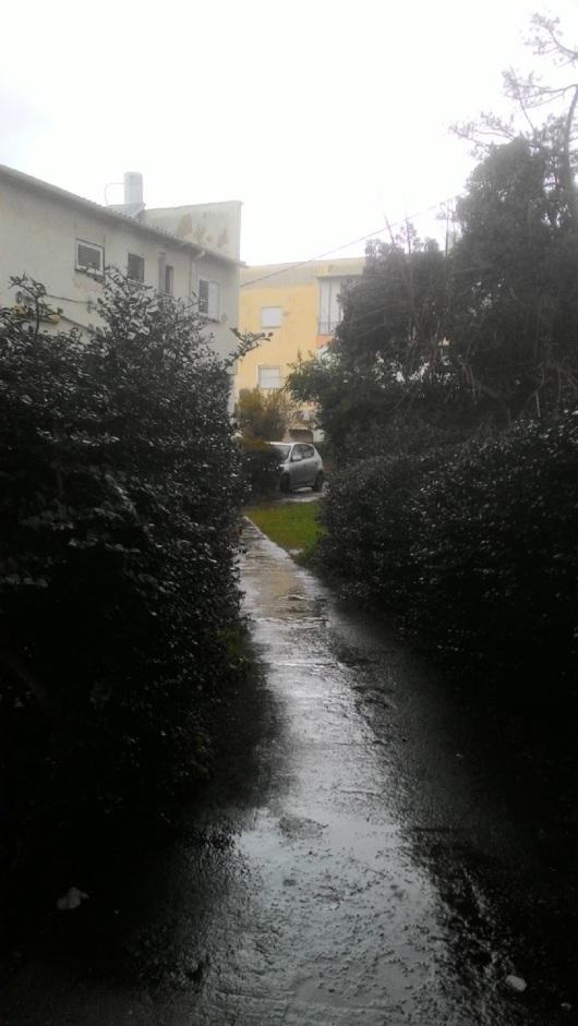 גשם בכניסה לבנין שלי   Rain at the entrance to my building