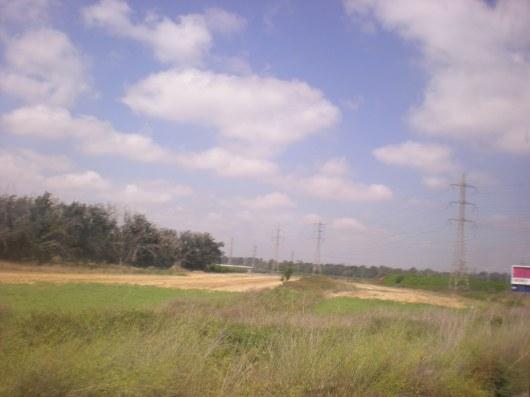 טיול בשדה