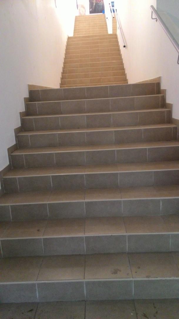 גרם המדרגות בגלריה   The staircase in the gallery